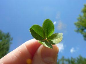 ラッキー、運、運を味方につける、運が味方